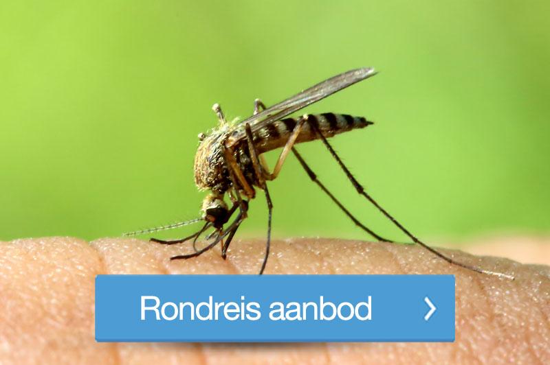 de beste tips tegen muggen
