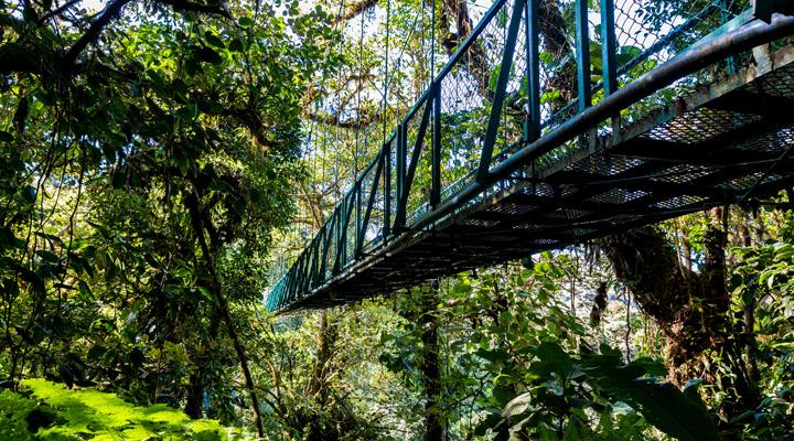 natuur Costa Rica