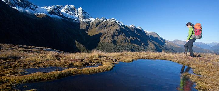 Bevolking Nieuw-Zeeland
