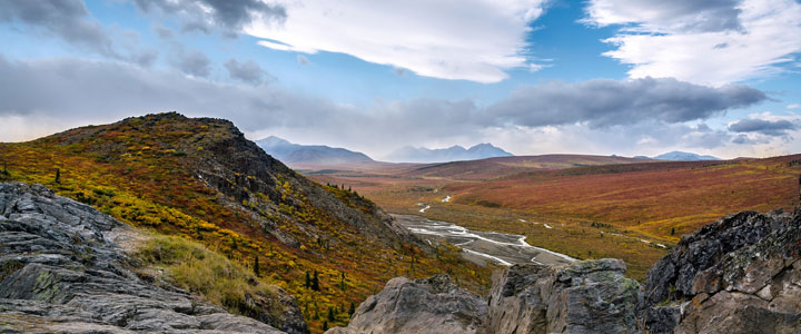 Denali nationaal park