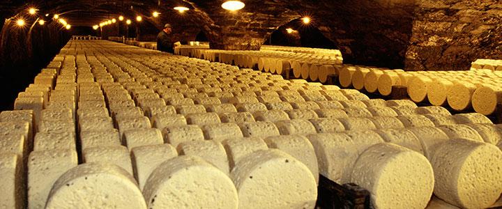 Roquefort kaas grotten