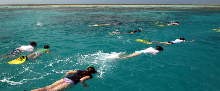 Snorkelen bij Zanzibar