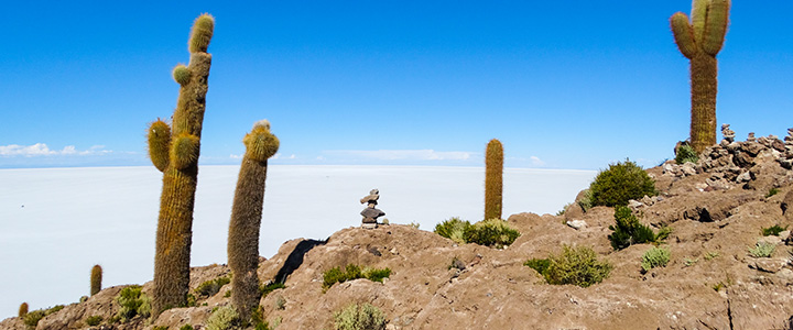 bolivia-Incahuasi-zoutvlakte