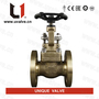 Small_aluminium-bronze-gate-valve