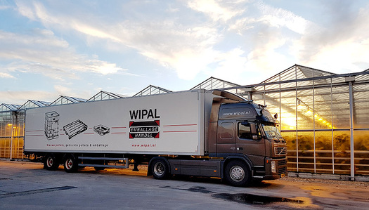 Large_img-wipal
