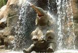 News_big_olifant-slangenpomp