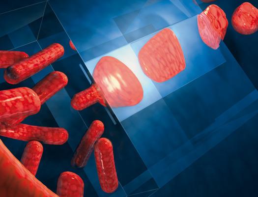 Large_tudelft-bacterien-nanospleten