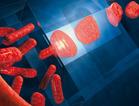 News_big_tudelft-bacterien-nanospleten