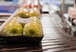 News_big_wetgeving_voedselcontactmaterialen_uitgediept_tijdens_empack_2012