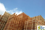 News_big_den-doelder-pallets