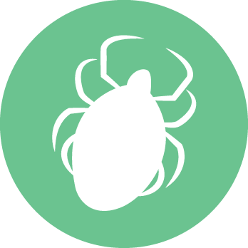 Onlinestore lyme icon