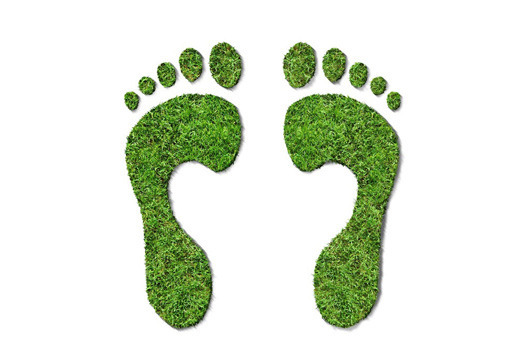 reducing the carbon footprint essay Reducing carbon footprints - reducing carbon footprints is as easy as using energy efficient light bulbs or using a modest thermostat setting learn about carbon footprint reduction methods.