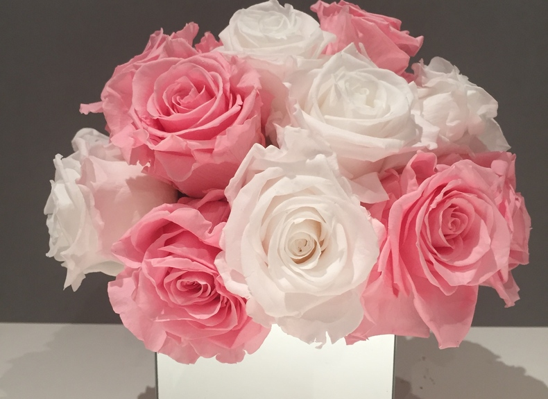 Preserved roses white and pink