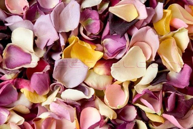 Petalos de Rosa Liofilizados Variado B
