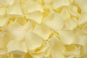 Product box freeze dried rose petals  off white