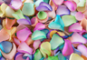 Freeze Dried Rose Petals Rainbow