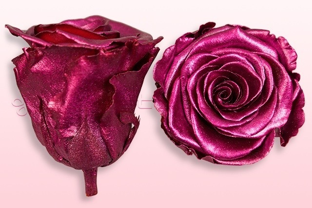 Preserved roses Metallic pink