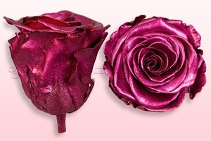 Product box rose amor  preserved roses  metallic pink