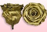 Preserved roses Metallic gold