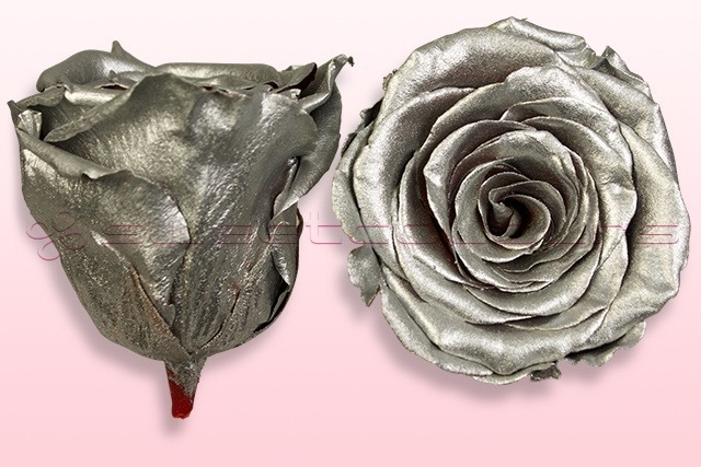 Preserved roses Metallic Silver