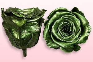 Preserved roses Metallic green