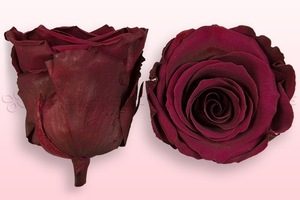 Product box rose amor  preserved roses  wine