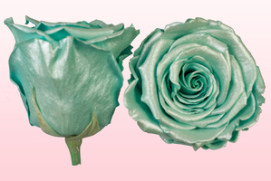 Product box rose amor  preserved roses  satin turquoise