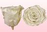 Geconserveerde rozen Satin wit