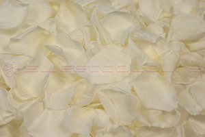 Product box preserved rose petals  white