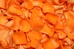 Product box preserved rose petals  orange