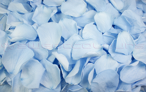 Product box preserved rose petals  light blue