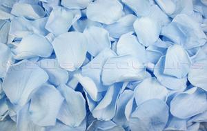 Pétalos de rosa preservados de color azul claro