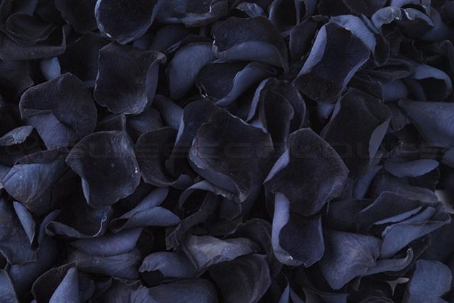 Preserved Rose Petals Black
