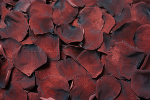 Product box preserved rose petals  dark brown