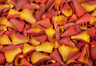 Freeze Dried Rose Petals Burnt-Orange