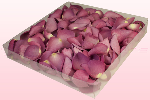 1 Litre Box Mauve Coloured Freeze Dried Rose Petals