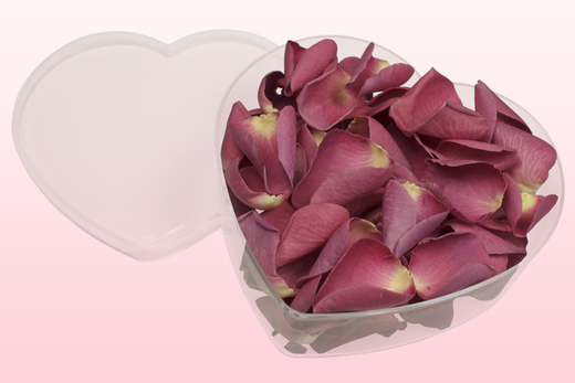 Heart Shaped Box With Classic Pink Freeze Dried Rose Petals