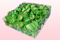Envase de 2 litros con pétalos de rosa liofilizados de color verde manzana.