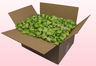24 Liter Doos Met Groene Gevriesdroogde Rozenblaadjes