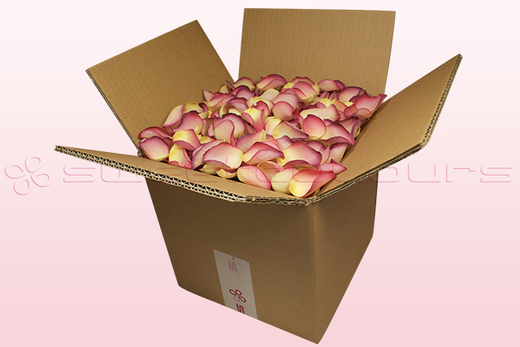 8 Litre Box Raspberry & Lemon Coloured Freeze Dried Rose Petals