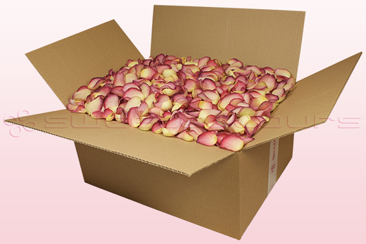 24 Litre Box Raspberry & Lemon Coloured Freeze Dried Rose Petals