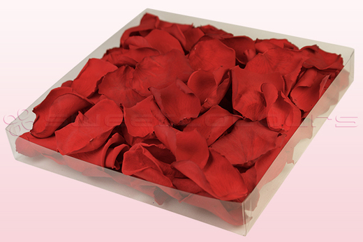 Confezione da 1 litro con petali di rosa stabilizzata di colore rosso.