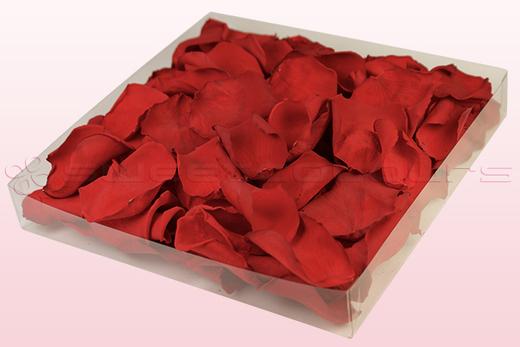 1 Liter Karton Konservierte Rote Rosenblätter
