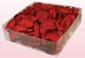 Confezione da 2 litri con petali di rosa stabilizzata di colore rosso.