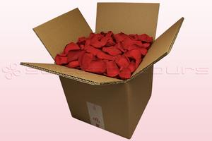 Caja de 8 litros con pétalos de rosa preservados de color rojo.