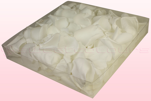 1 Litre Box Of Preserved White Rose Petals