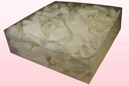 Emballage 2 litres pétales de roses conservés couleur blanc