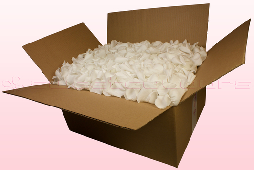 24 Litre box With Preserved White Rose Petals