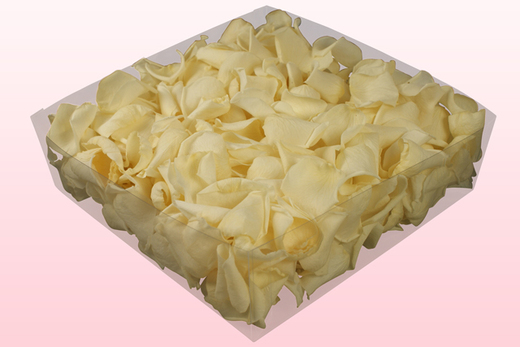 2 Litre Box Of Preserved Champagne Rose Petals