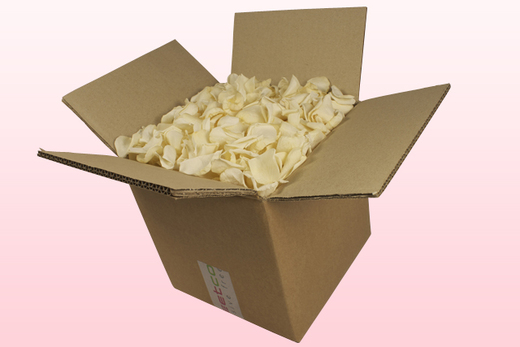 8 Litre box With Preserved Champagne Rose Petals